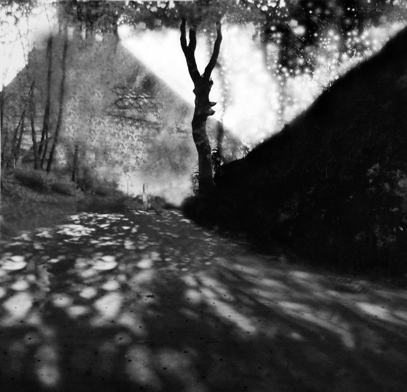 Sueño del observador. Boceto 2, 2010-11, fotomontaje