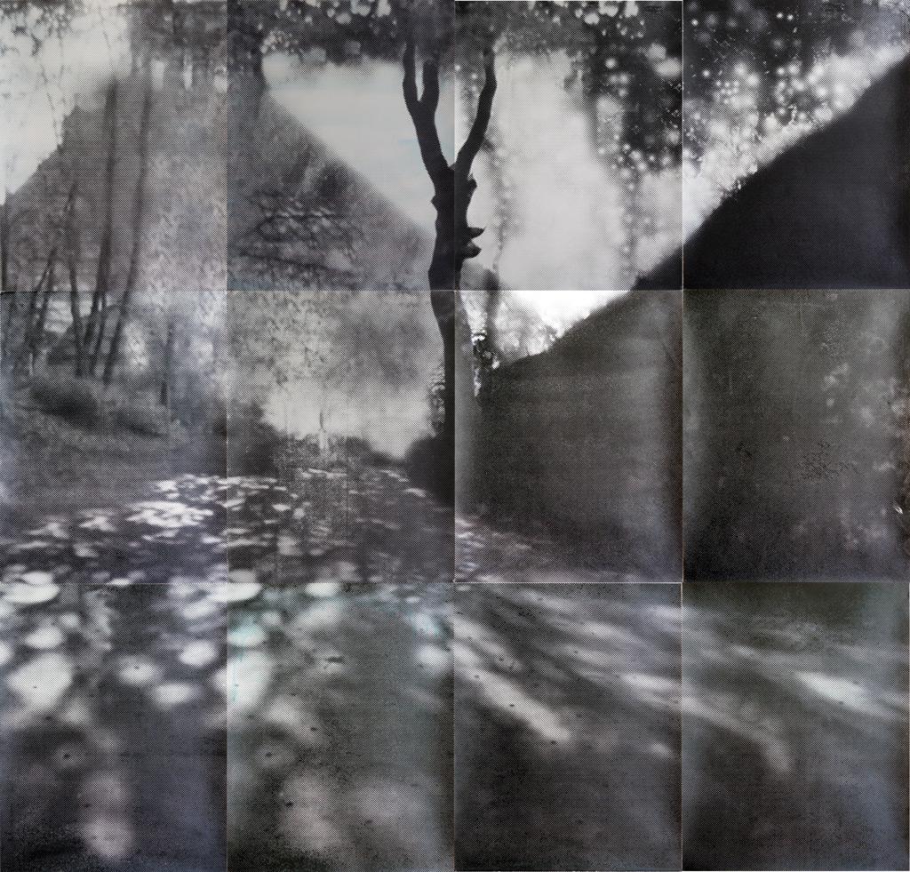 sueño del observador 2, 2013, 300 x 300 cm, acuarela y serigrafía sobre papel, versión 2ª