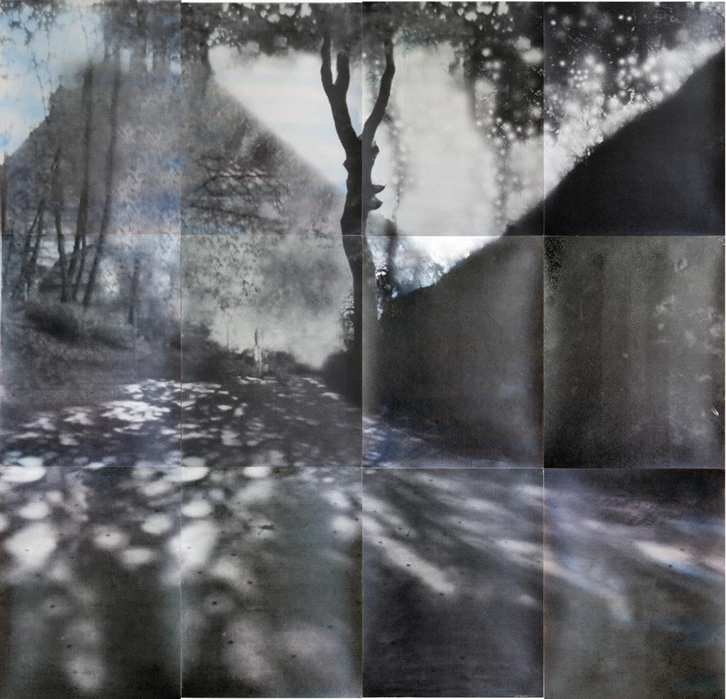 sueño del observador 2, 2013, 300 x 300 cm, acuarela y serigrafía sobre papel